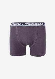 Nina Club Παιδικό Μπόξερ για Αγόρι Γκρι Thunderwear 316
